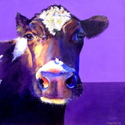 cow painting, cow print on canvas, cow painter, giclee print