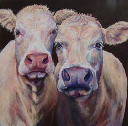 cow print, giclee print, charolais