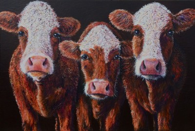 orla lucy and darcey original cow painting