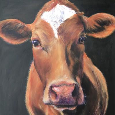 annabelle guernsey cow