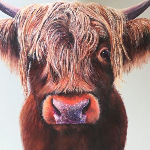 highland cow jasper